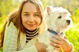 A dog in golden sunshine, getting a hug.