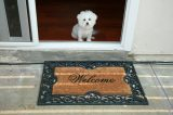 A small white dog waits at the door near a Welcome mat.