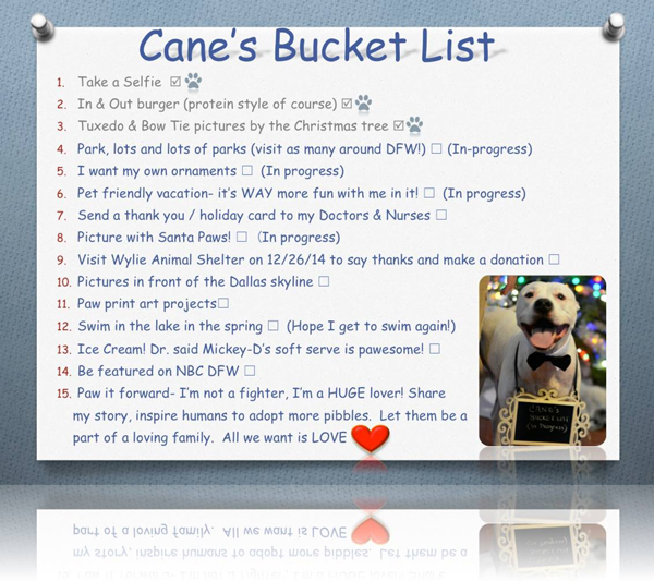 cane-bucket-list-trueone