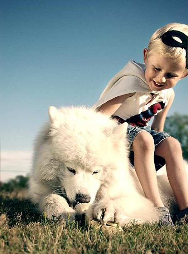 3 Things to Do Before Introducing Your Dog to a Baby