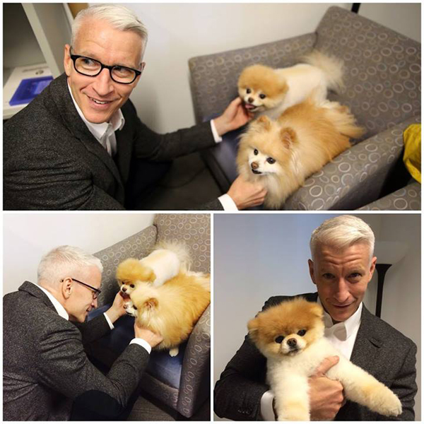 Anderson Cooper, Today We Love You Even More