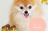 """For DIY Dogsters: Recipes From My eBook """"52 Weeks of Treats"""""""
