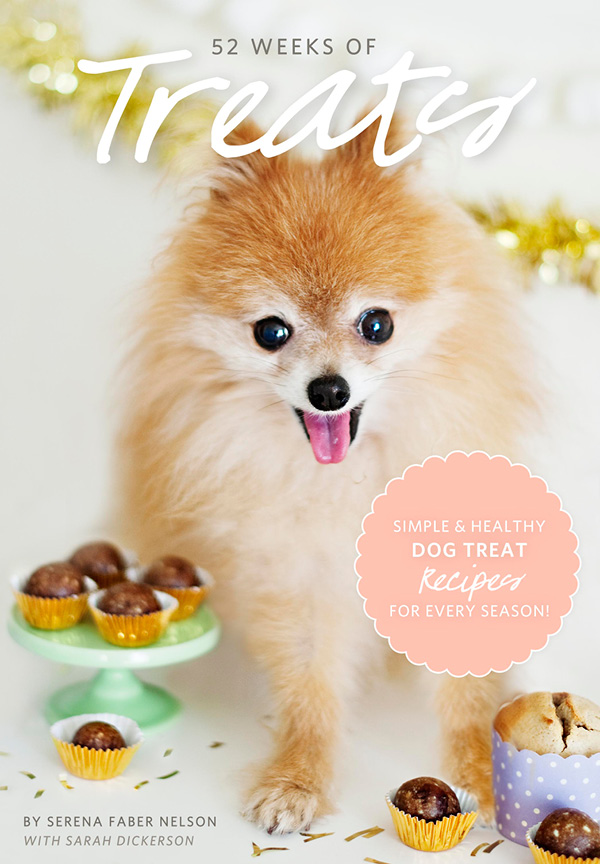 "For DIY Dogsters: Recipes From My eBook ""52 Weeks of Treats"""