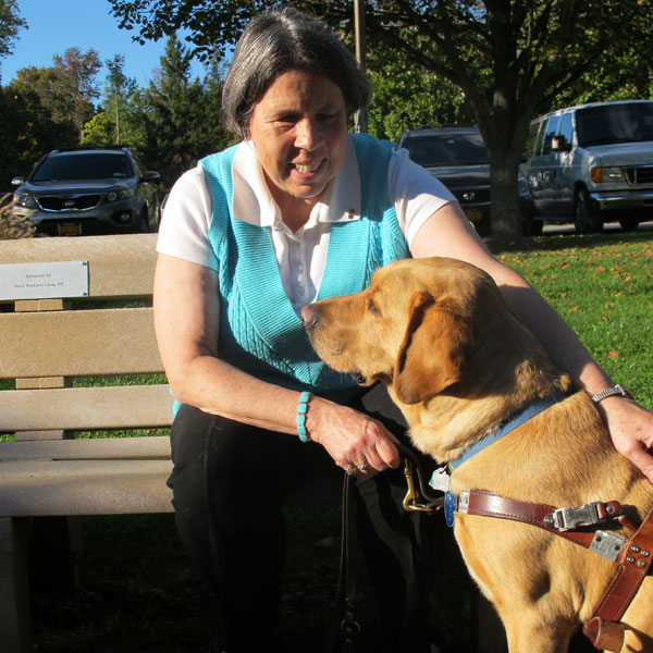 What Happens to Guide Dogs When They Retire?