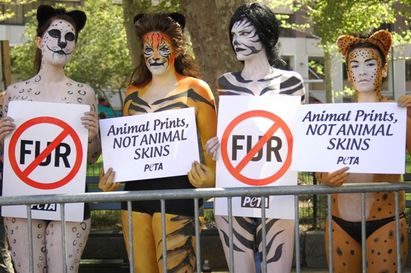 Herein: PETA's Response to Dogster Columnist's Opinion Piece