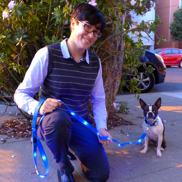 We're Giving Away an LED Collar from Dog-E-Glow