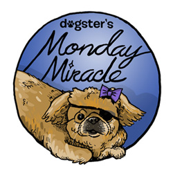 Dogster-Monday-Miracle-badge_49_0_0_0_1