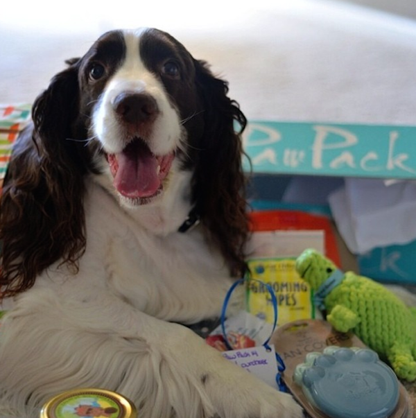 Friday Freebie: Win a PawPack Box Filled with Goodies for Your Pup