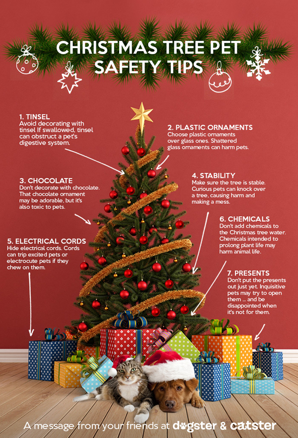 Infographic: Keep Your Pets Safe Around the Christmas Tree