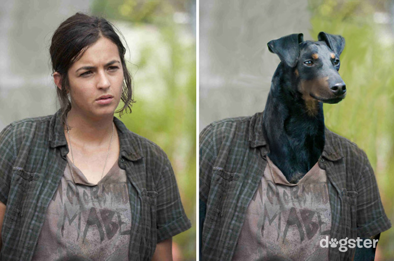"Dogster Presents: The Dogs of ""The Walking Dead"""