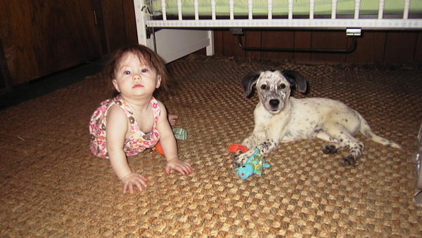 You Might Call My Toddler a Puppy Whisperer