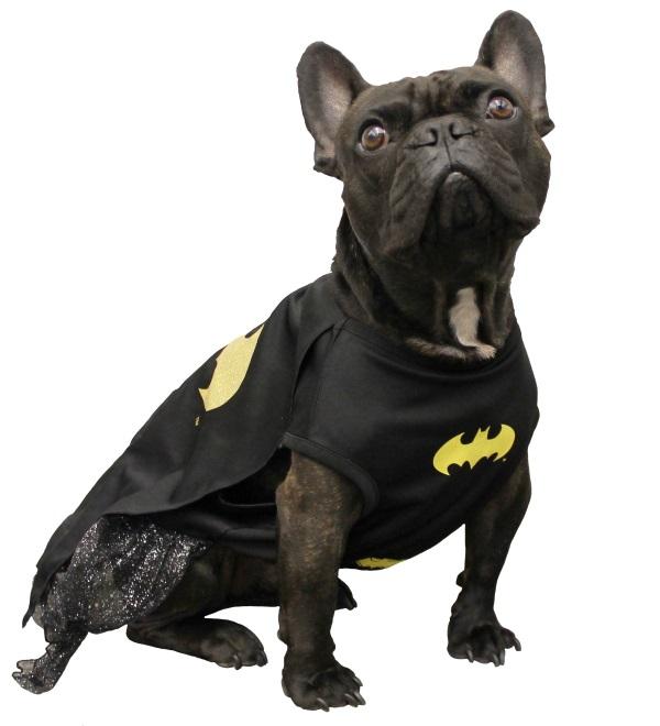 Da-na-na-na-na-na-na-na…BAT DOG!