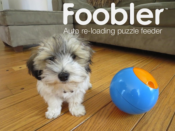 Dogster Obsessions: The Foobler, a Self-Reloading Puzzle Feeder for Dogs