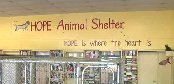 Tucson's Only No-Kill Shelter Struggles to Keep the Lights On