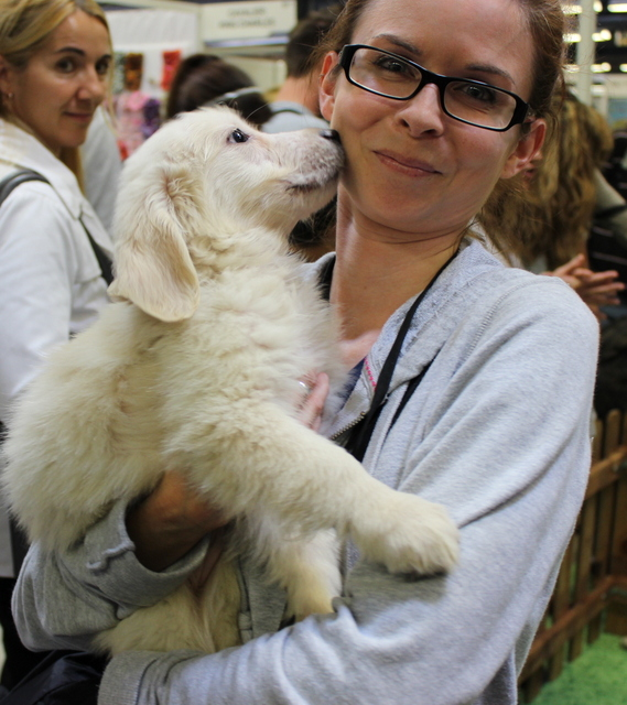 Sights, Sounds — and Smells — from France's Animal Expo