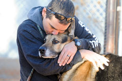 Bela the German Shepherd Will Be Buried With His Owner After All