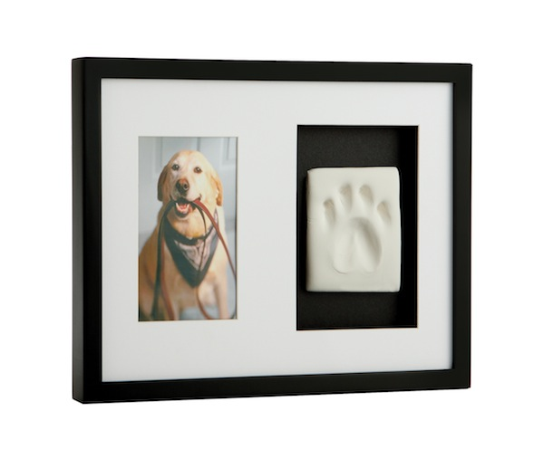 "Ace Gives Her ""Impression"" of Pearhead's Pawprint Frame"