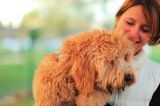 We Want to Know: What Have You Learned From Your Pet?