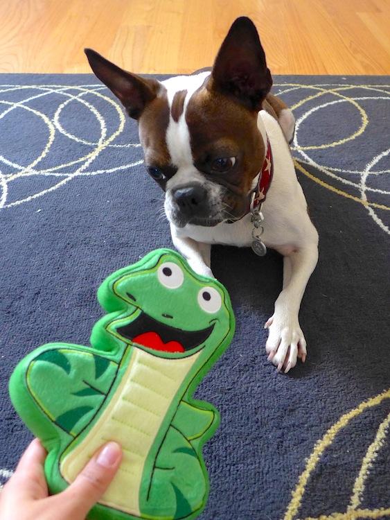 We Review Pridebites Dog Toys