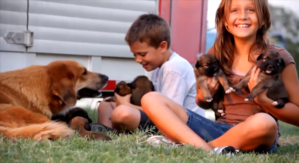 Not That You Need Them, But Here Are 6 Reasons to Get a Puppy for Your Kids