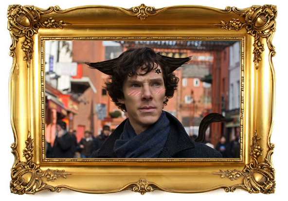 Benedict Cumberbatch Finally Answers the Question: Cats or Dogs?
