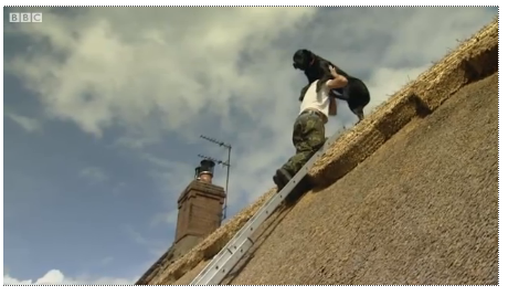 Dog on the Roof: A 100-Pound Pup Helps Thatch Rooftops in England