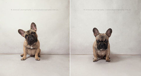 Serenah-Photography-4