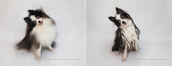 Serenah-Photography-9