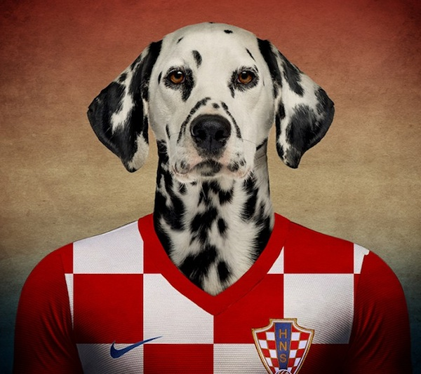 And Now, Dogs Wearing Soccer Jerseys for the 2014 World Cup