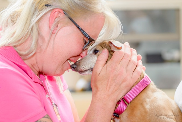 Trudy the Puppy Mill Italian Greyhound Finds Freedom at Last