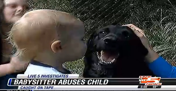 Trust Your Dog! This One Alerted South Carolina Parents to an Abusive Babysitter