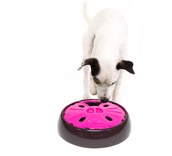 Dogster Giveaway: Win an Aikiou Interactive Slow Feeder
