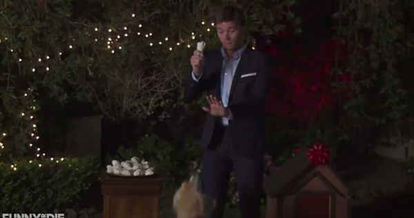 """The Bachelor With Dogs"" Stars Clint Eastwood's Son and Lots of Adorable Pups"