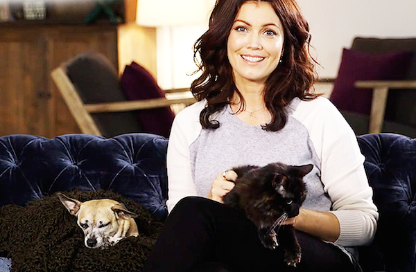 "We Chat With ""Scandal"" Star Bellamy Young About Shelter Pets and White House Dogs"
