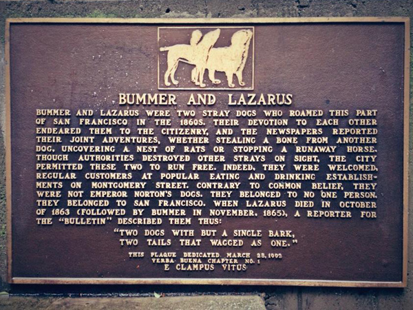 A Fond Look Back at Bummer and Lazarus, San Francisco's Legendary Dogs