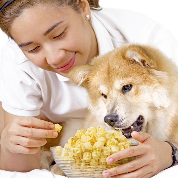 Healthy Food Additives For Dogs