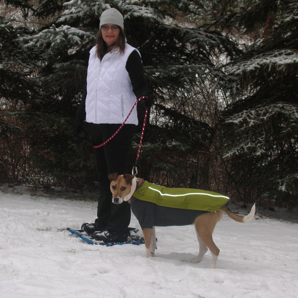 How to Go Snowshoeing and Skijoring with Your Dog