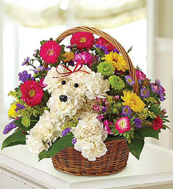 How About Some Dog-Shaped Flowers for Mother\'s Day?