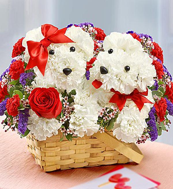 dog-flowers-2