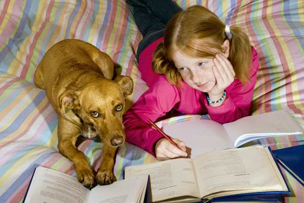 "Get Prepared for Fall with ""Back to School"" Tips for Your Dog"