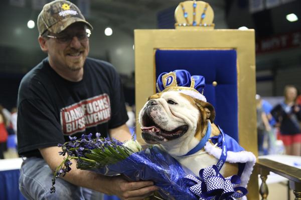 drake-bulldog-contest-3