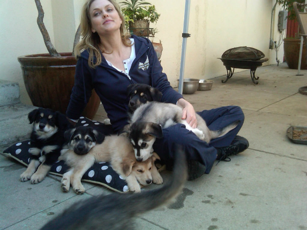 """Actress and Advocate Elaine Hendrix Launches """"The Pet Matchmaker"""" Podcast"""
