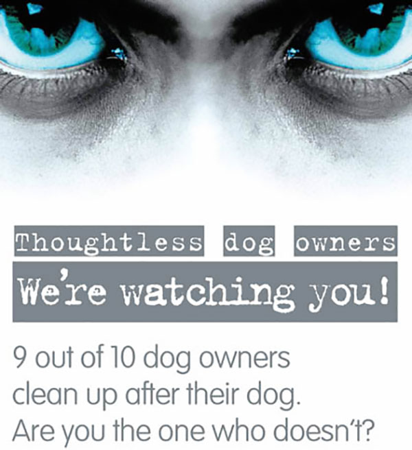 We Are Watching You Dog Poo Poster