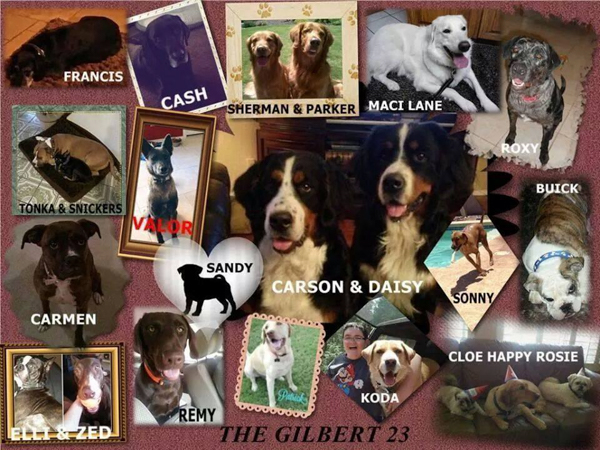 Months After the Fact, 4 Are Indicted in the Death of 21 Dogs