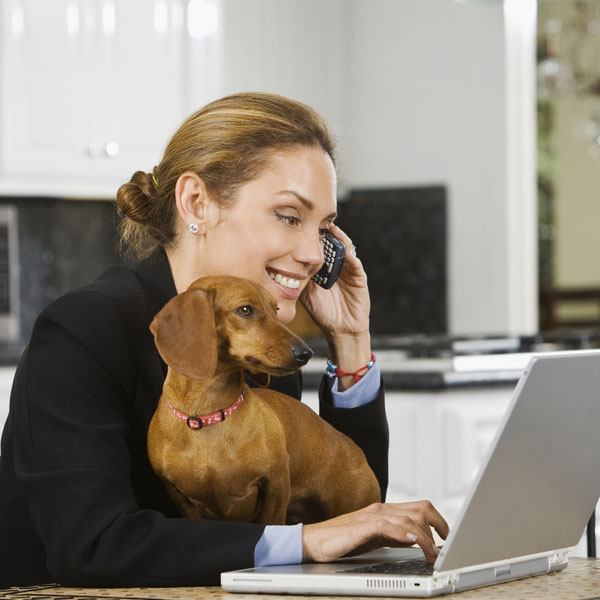 We Answer Google's Top Dog Questions Of 2014