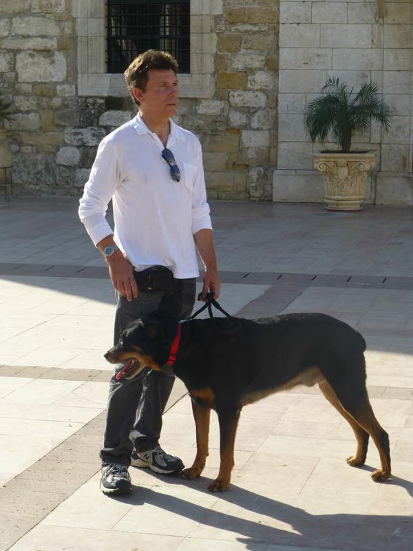Q&A: How I Travel Internationally with a Large Dog