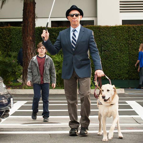 We Talk to Lorri Bernson, Guide Dog Consultant on TV Shows