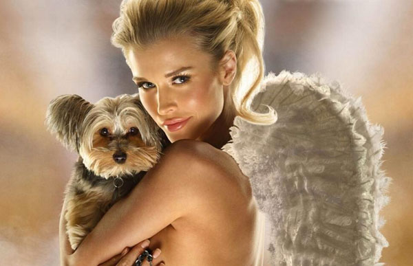"Joanna Krupa of ""Real Housewives of Miami"" Talks About Her Dogs and Rescue Work"