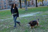 7 Reasons Senior Dogs Make Great Adoptions