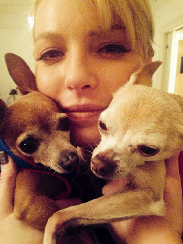 We Talk to Katherine Heigl About Her Rescue Dogs and Shelter Advocacy